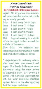 Cool Season Lawn Watering Schedule