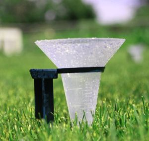 Water Catcher Cup